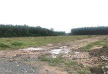 Một khu đất mà Công ty cổ phần Địa ốc Alibaba quảng cáo rầm rộ là dự án Long Phước 6