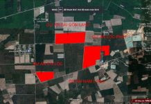 Một số dự án nhà đất đang triển khai tại tuyến DH619 - Long Nguyên - Bàu Bàng