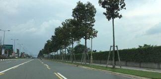 """145 ha """"đất vàng"""" nay là sân golf Harmonie có vị trí đắc địa ở thành phố mới Bình Dương, có một mặt tiền là đường Phạm Ngọc Thạch Ảnh: Nhật Mai"""