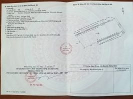 Bán lô đất 11.099m2 tại phường Tân Định, Thị xã Bến Cát