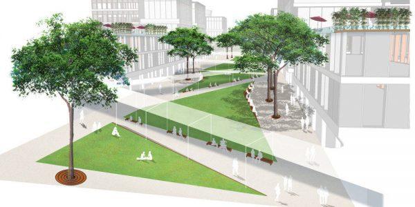 Bố trí cây xanh tại dự án Đại học quốc tế Việt Đức