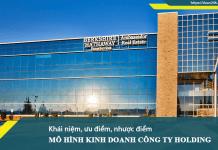 Mô hình hoạt động Công ty Holding được nhiều doanh nghiệp Việt Nam áp dụng