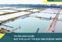 Tìm hiểu về đất NTS (Đất nuôi trồng thủy sản)