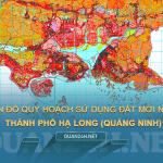 Tải về bản đồ quy hoạch sử dụng đất TP Hạ Long (Quảng Ninh)